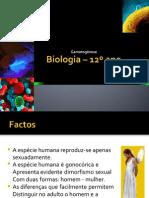 1.1 - Gametogénese e fecundação