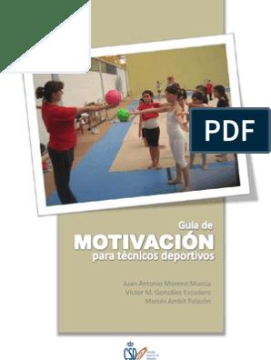 Guía De Motivación Para Técnicos Deportivos Deportes