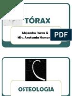 ToRAx_2010