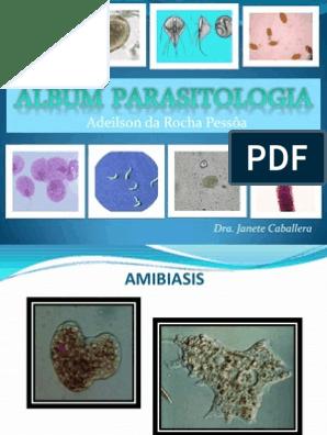 parásitos de la malaria humana en cultivo continuo.pdf