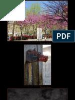 2011-03-31 - Ricordi di Roma.pdf