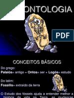 01 PALEONTOLOGIA