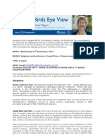 Bird's Eye View Nicky Wagner MP for Christchurch Central