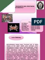 Kelompok 10 Crustacea