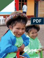 memoria ayuda en accion perú