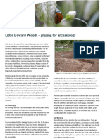 Little Doward Woods - grazing for archaeology