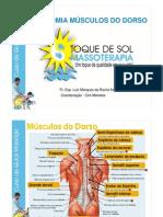 Curso Anatomia Dorso