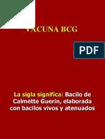 02- BCG