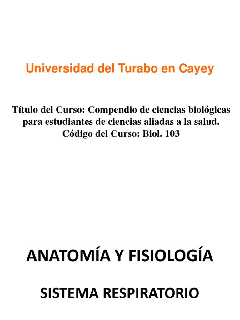 Prof. Barrios Biol 103 Anatomia Fisiologia Generalidades Sistema ...