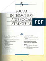 Schaefer - Social Interaction and Social Structure