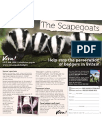 Help stop the persecution of badgers