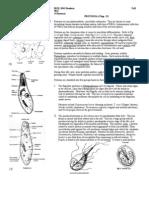 BIOL 2041 Lecture 14 Protozoans1
