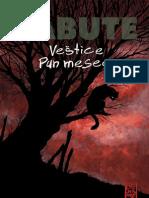 Veštice Pun mesec  - Kristof Šabute (preview)