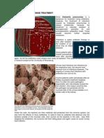Klebsiella Pneumoniae Treatment