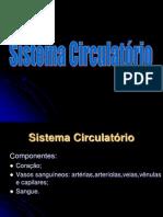 Sistema Circulatorio 20122ANO