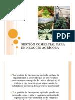 Capacitacion Negocios Agricolas. Palmenia Cardenas