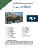 Ficha Bisonte