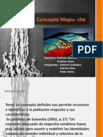 Concepto Mapu Che