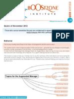 Boostzone Institute - WebReview November 2012