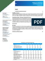BRE Bank - Recesja w 2013