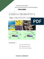 Cadena de Olivo Tacna