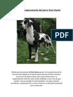 Facilisimo - El natural temperamento del perro Gran Danés