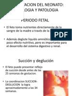 ALIMENTACION_DEL_NEONATO_JTC[1]