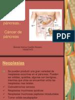 Neoplasias exocrinas del páncreas (1)2