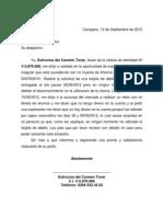 Carta Del Sur