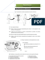 CN9-ficha-AP Reprodutor