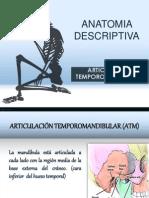 Anatomia Descriptiva