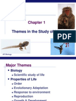 1 Themes