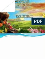 Evs Project