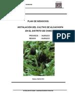 Plan de Negocios Alcachofa
