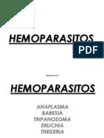 Clase Hemoparasitos 2011