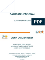 Salud Ocupacional Presentacion Del Proyecto