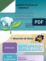 Presentaciones de ABSORCION de GASES