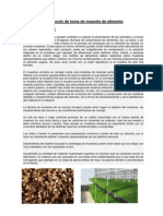 Protocolo de Toma de Muestra de Aliment1.Docx..222