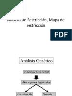Análisis de Restricción, Mapa de restricción2010