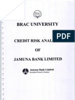 Credit Risk Analysis of Jamuna Bank Limited_rescan