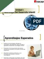 Neurologia Del Desarrollo Infantil
