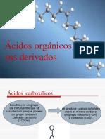 Ácidos orgánicos y sus derivados