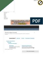 HTML.rincondelvago.com Test de La Figura Humana.html