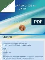 Curso de Programacion en JAVA VFJL Tema1