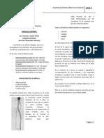 olimpiadas MEDULA 2012.doc.pdf