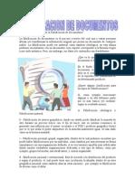 Falsificacion de Documentos - Yiralit