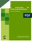 Estructura Curriculum Profesional
