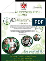 Chronicles of the Fitzgerald Clan 2013 Leaflet