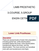 Engin Cetin Lower Limb