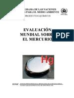 Evaluacion Mundial Sobre El Mercurio